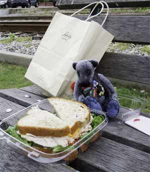Wilbeary with deli sandwich for lunch