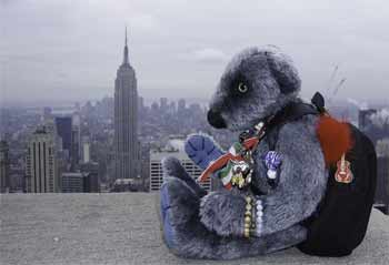 Wilbeary on top of the rock